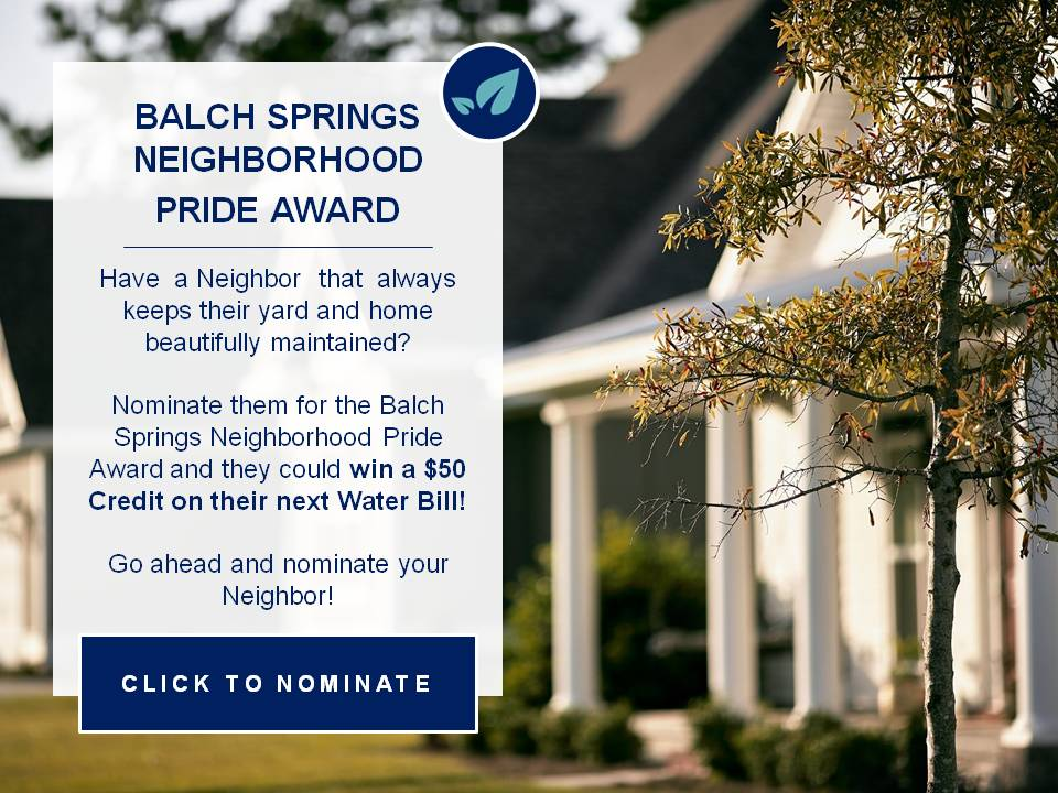 NeighborhoodPrideAward_NominationLink